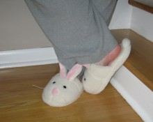 27feb_Bunny-Slippers